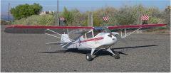 """Dare Taylorcraft BC-12    (60"""" wingspan)"""